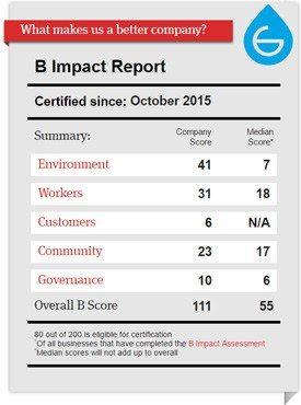 grosche B Corp score sheet