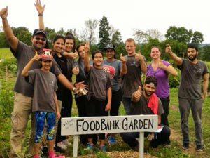 foodbank volunteering grosche coffee tea social enterprise