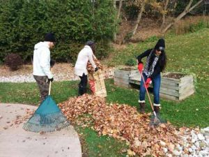 yard-cleanup-at-a-community-hospice-grosche