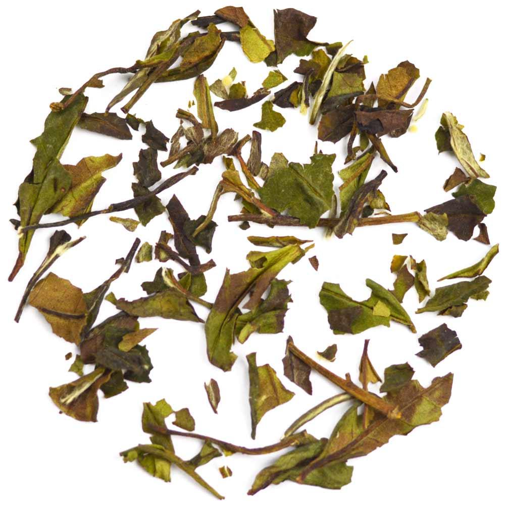 White Tea Blissful Blueberry White Tea All Natural Grosche