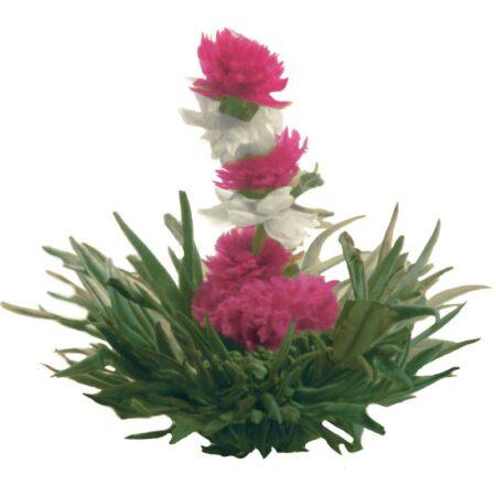 GROSCHE-Riising-Spring-Blooming-green-tea-800