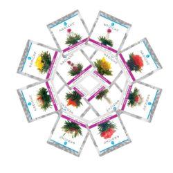 Rose-blooming-tea-12-star-WEB