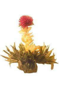 GROSCHE BLOOMING Tea With Jasmine Flower